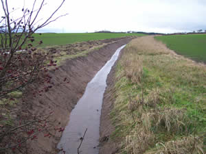 A picture of a ditch which has been cleaned