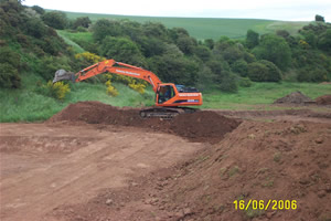 Reedbed Contruction